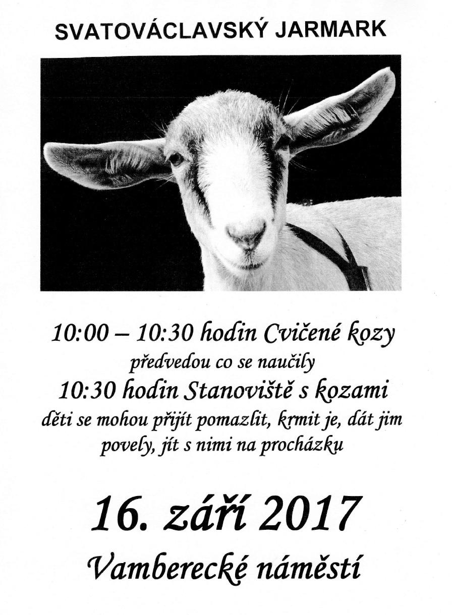 16.09.2017 - Svatováclavský jarmark - cvičené kozy